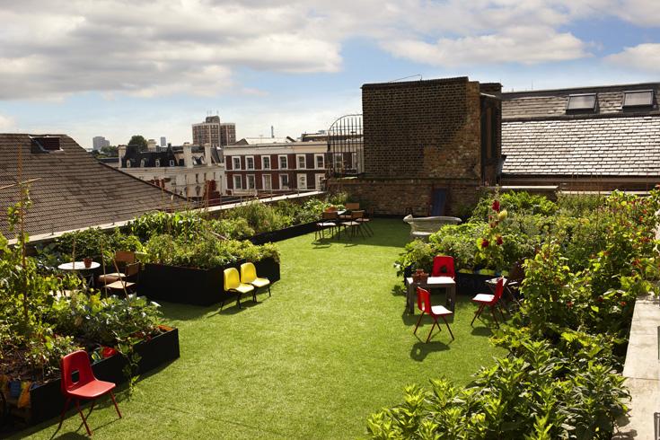 Roof Shot 1 Garden