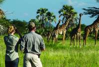 Safari-tips van een Afrika-expert