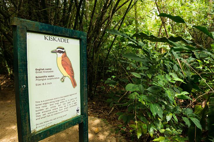 Peperpot Nature Park bij Paramaribo, Suriname