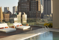 Zen in New York