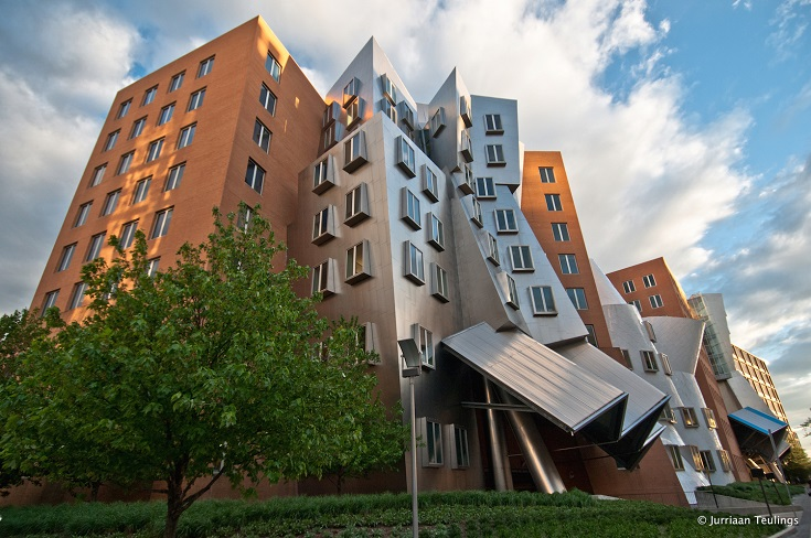Gehry Boston