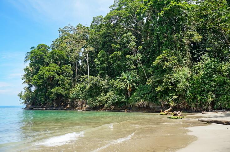 Punto Uva Costa Rica