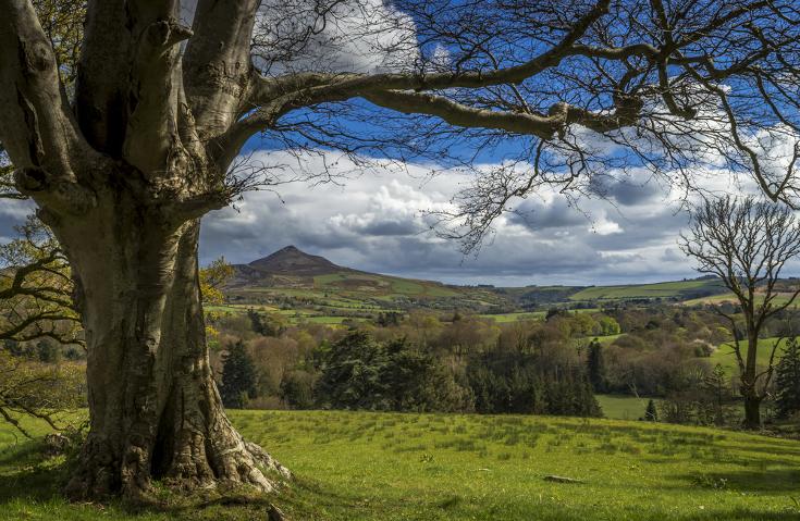 Wicklow Mountains Ierland