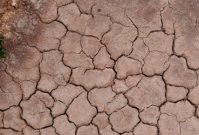 Atacama: de hoogste, droogste hotspot van Chili