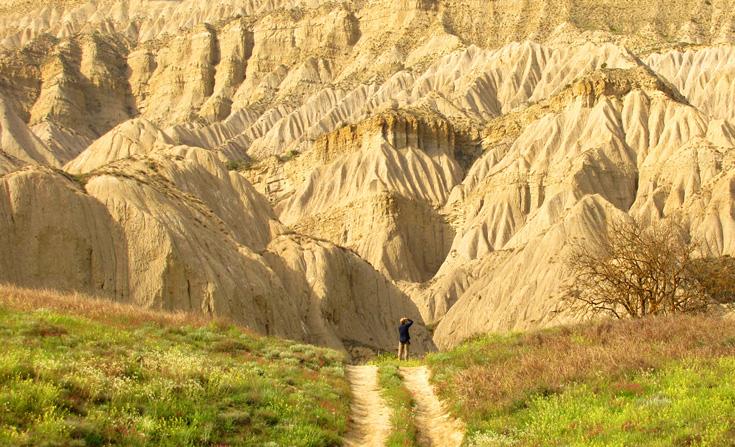 Vanwege het landschap vol scherpe rotsen staat Vashlovani National Park ook wel bekend als het Wilde Oosten.
