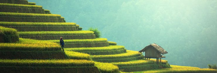 Ontdek Vietnam met Vietnam Airlines