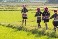 4 hidden gems in Thailand die je gezien moet hebben